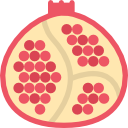 What nutrients does a pomegranate plantation require?