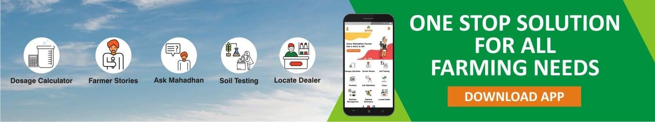 Mahadhan App 1