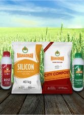 Mahadhan Silicon - Natural Fertiliser