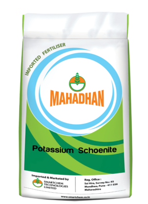 Mahadhan _PS