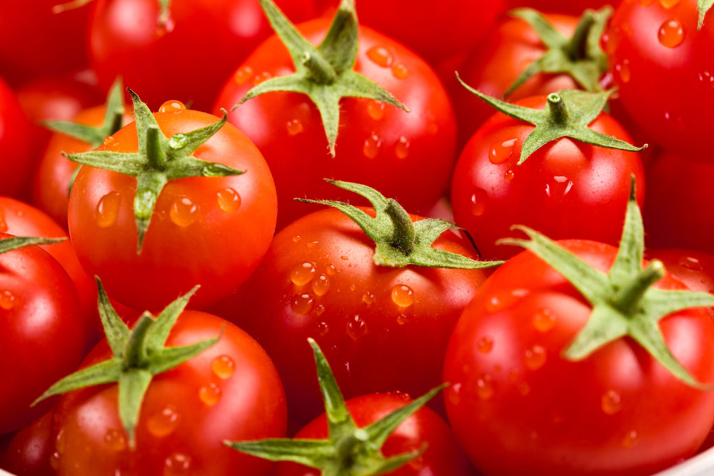 7 tips to Get the Best Tomato Yield